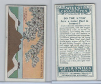 W62-127b Wills, Do You Know 2nd, 1924, #15 Coral Reef is formed?