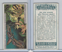 W62-127b Wills, Do You Know 2nd, 1924, #16 Flowers smell?