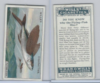 W62-127b Wills, Do You Know 2nd, 1924, #19 Flying-Fish flies?
