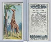 W62-127b Wills, Do You Know 2nd, 1924, #21 Giraffe has a long neck?