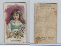 N12 Allen & Ginter, Fruits, 1891, Blackberry