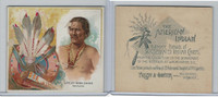 N36 Allen & Ginter, Celebrated American Indian Chiefs, 1888, Great War Chief