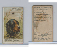N375 H. Ellis, Breeds of Dogs, 1890, Gordon Setter