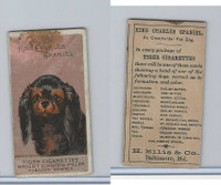 N375 H. Ellis, Breeds of Dogs, 1890, King Charles Spaniel