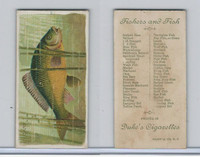 N74 Duke, Fishers and Fish, 1888, Carp