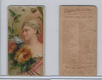 N75 Duke, Floral Beauties, 1892, Chrysanthemum