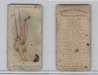 N77 Duke, Gymnastic Exercises, 1887, Flying Rings, Swinging