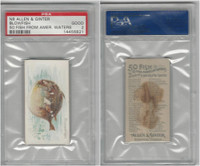 N8 Allen & Ginter, Fish From American Waters, 1889, Blowfish, PSA 2 Good