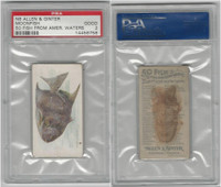 N8 Allen & Ginter, Fish From American Waters, 1889, Moonfish, PSA 2 Good