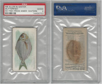 N8 Allen & Ginter, Fish From American Waters, 1889, Butterfish, PSA 2 Good