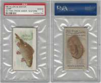 N8 Allen & Ginter, Fish From American Waters, 1889, Carp, PSA 2 Good
