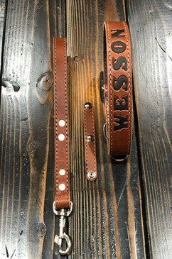Fitted Dog Collar