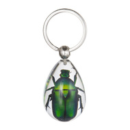 Chafer Beetle Key Chain