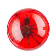 Tarantula Paperweight-Large-Red