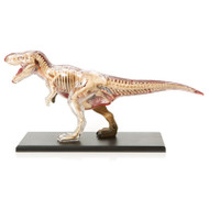 Anatomical Snap-Together Kit, T-Rex