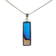 Butterfly Necklace - Morpho didius & Morpho sulkowskyi