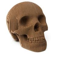 Cardboard Skull Kit