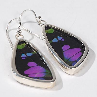 Butterfly Earrings - Thumbnail