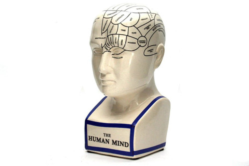 Phrenology Head - Thumbnail