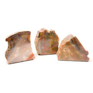 Rainbow Petrified Wood Stand-ups Thumbnail