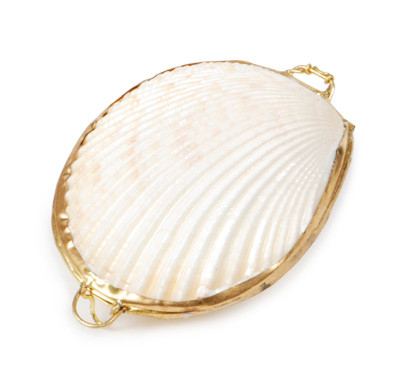 Shell Coin purse White Cockle thumbnail