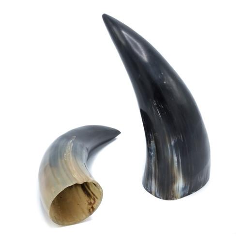 Water buffalo Horn - Thumbnail