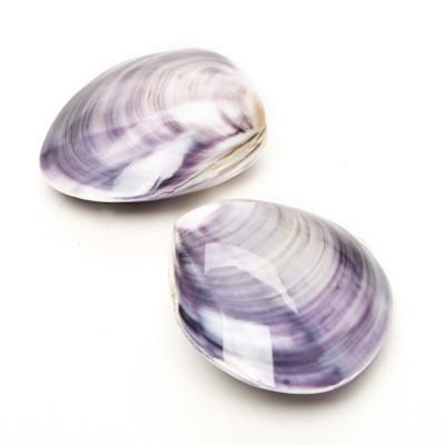 Purple Calm - Thumbnail