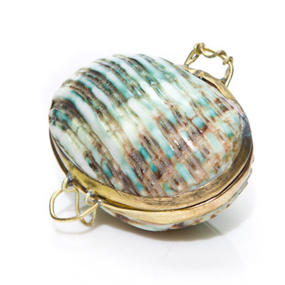 Shell Coin Purse - Green Argy