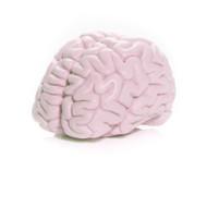 Brain Soap - Pink