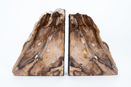 Petrified Wood Bookends - Thumbnail