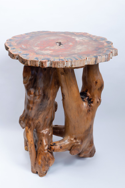Petrified Wood Slab w/ Wooden Stand - Thumbnail