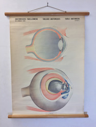 Vintage Eye Poster