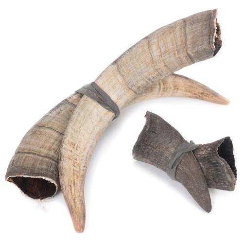 Pair of Goat Horns - Thumbnail