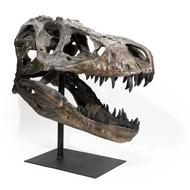 Replica T Rex Skull Large - Thumbnail
