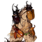 Rhino Beetle Dome - Closeup