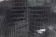 Nile Crocodile Skin Belly Matte Anthracite 50/54 cm Grade 5