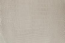 Nile Crocodile Skin Belly Glazed Beige 30/34 cm Grade 5
