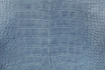 Nile Crocodile Skin Belly Millenium Denim 40/44 cm Grade 5