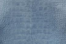 Nile Crocodile Skin Belly Millenium Denim 40/44 cm Grade 5