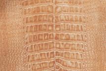 Nile Crocodile Skin Belly Suede Caramel 30/34 cm Grade 5