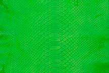 Python Skin Burmese Back Cut Neon Green