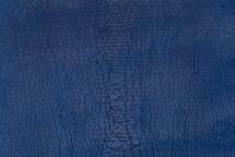 Shark Skin Matte Blue