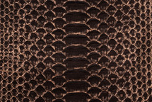 Python Skin Long Orion Brown