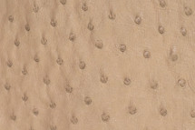 Ostrich Skin Cashmere Spice Beige