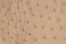Ostrich Skin Cashmere Spice Black