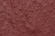 Ostrich Skin Cashmere Spice Burgundy
