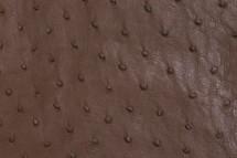 Ostrich Skin Matte Nutmeg II