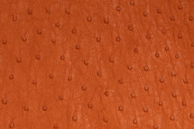 Ostrich Skin Matte Papaya