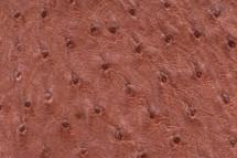 Ostrich Skin Stardust Red
