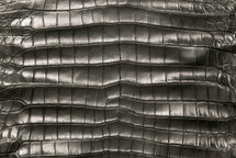 Alligator Skin Belly Matte Anthracite 50/54 cm Grade 5